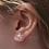 Thumbnail: Starfish Stud Earrings - Silver