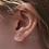 Thumbnail: Starfish Stud Earrings - Gold
