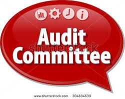Audit Committee Membership