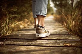 Embodied-Empowerment-Wildlife-Wellness-Walks-a-unique-experience.jpg