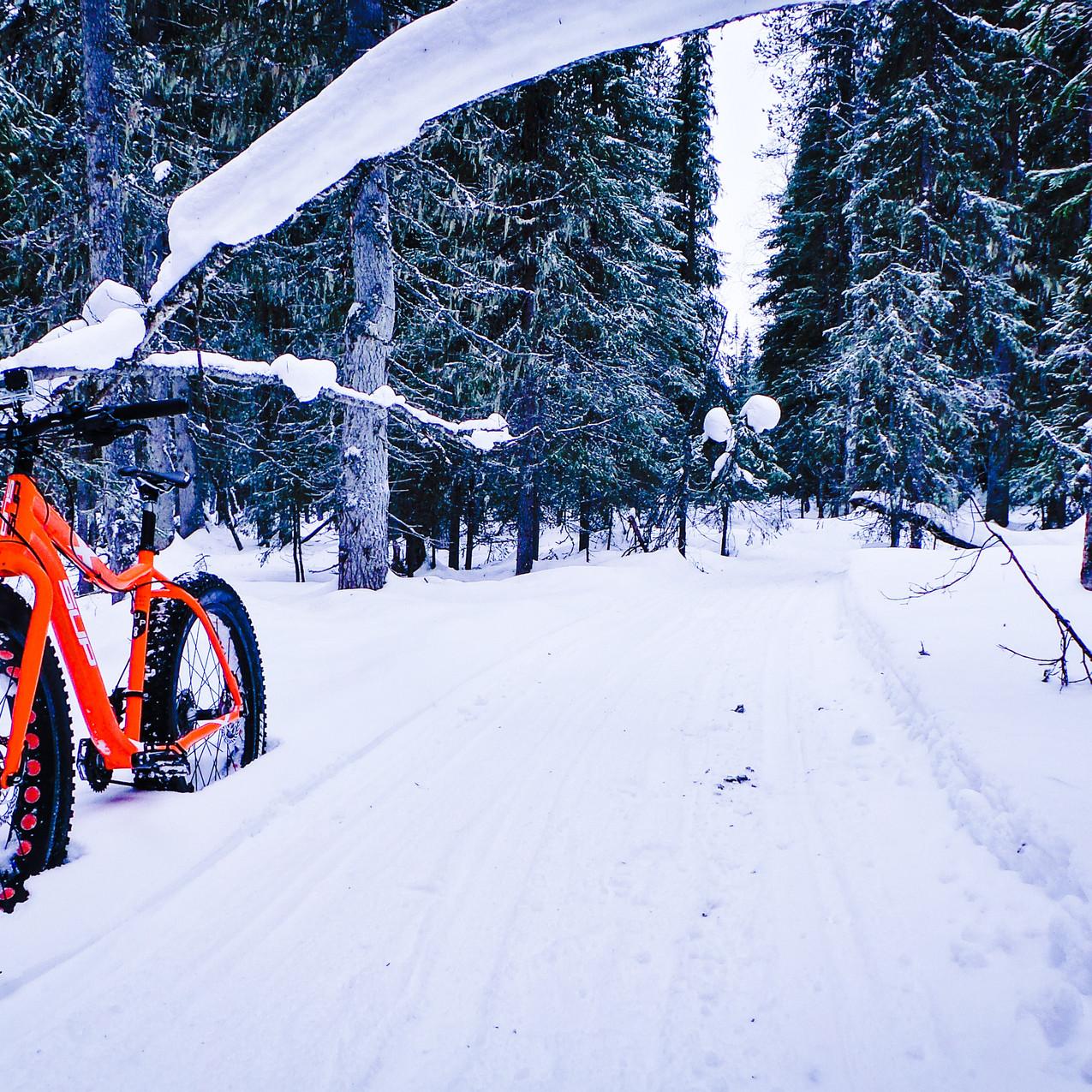 Fat Biking on the trails