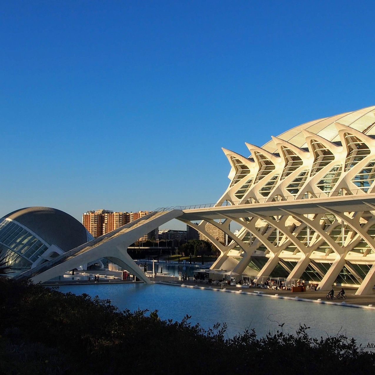 City of Arts and Sciences, Valenc188