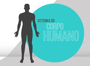 modelo-powerpoint-corpo-humano-body.PNG