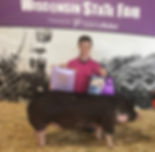 grand champion berk gilt 2018.jpg
