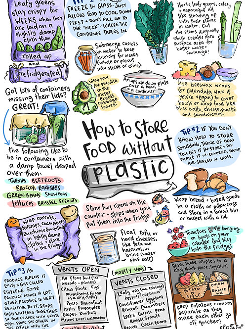 """The """"How To Store Food Without Plastic"""" Print"""