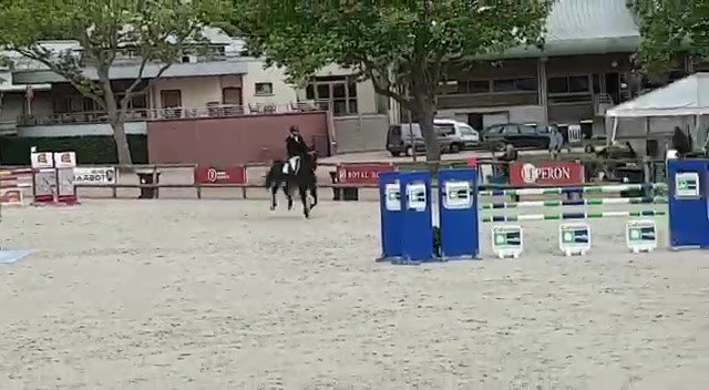 Darkhorse 6 ans A Deauville