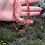 Thumbnail: Inti Collar Red