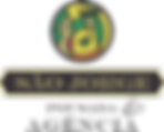 Logo PASJ.png