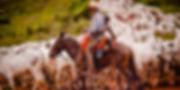 gado20140122_0004-1280x640.jpg