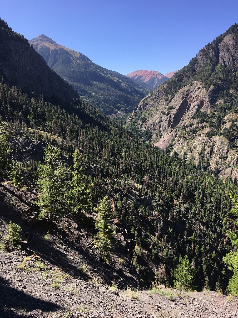 american flats wilderness area summer hiking ouray colorado