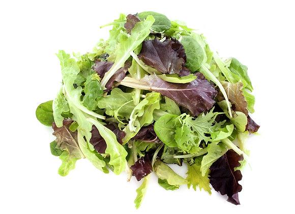 Lettuce - Mesclun
