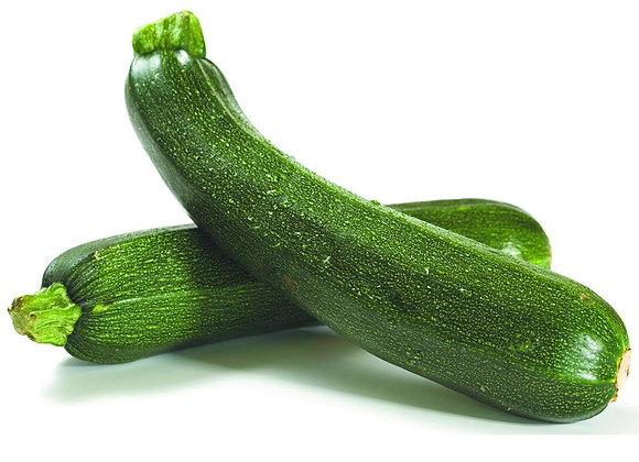 Zucchini - Noche