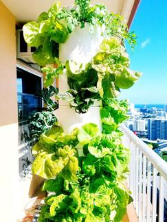 Salad tower