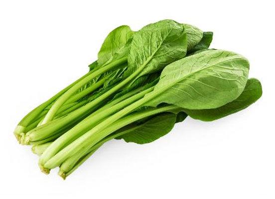 Tendergreen - Mustard Spinach