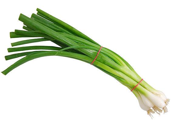 Green Onion - White Spear