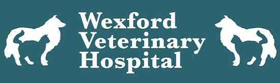 Wexford Vet.JPG