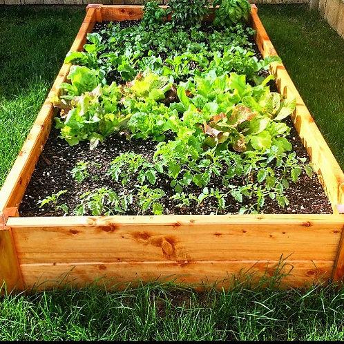 2/1/280 Garden Bed