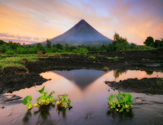 Website_Landscapes_13.jpg
