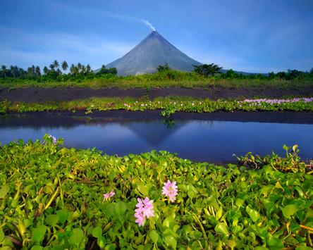 Website_Landscapes_14.jpg