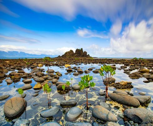 Website_Landscapes_33.jpg