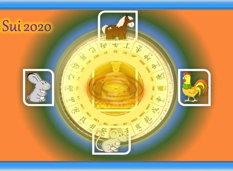 TAI SUI 2020