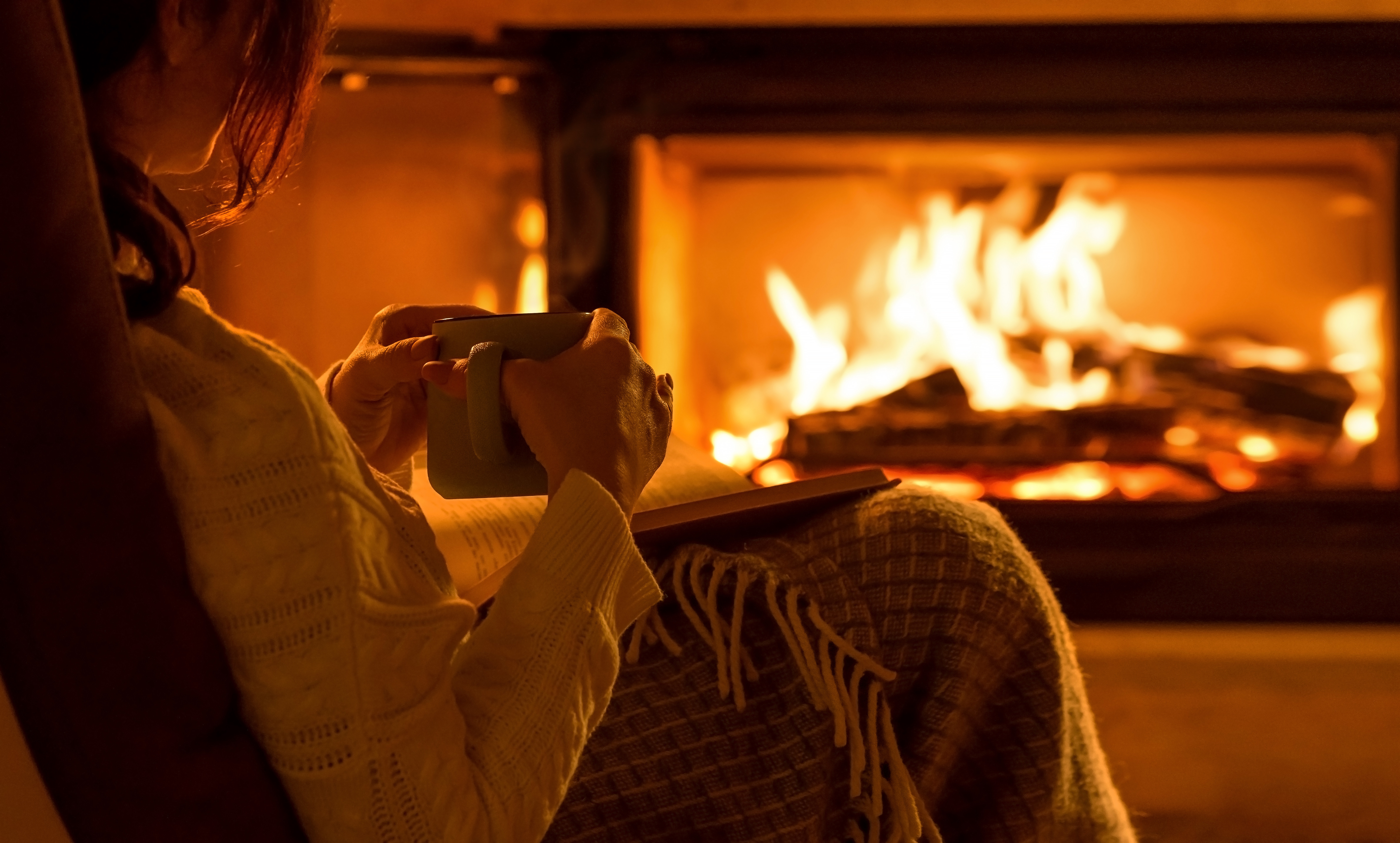Fireplace Maintenance NG/LP