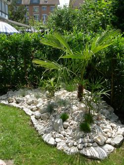 Palminsel mit Jura