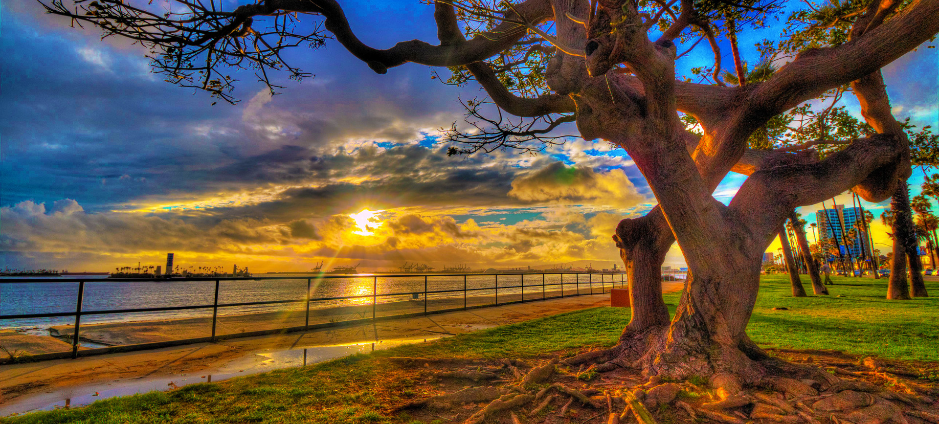 Sun Setting: Bluff Park