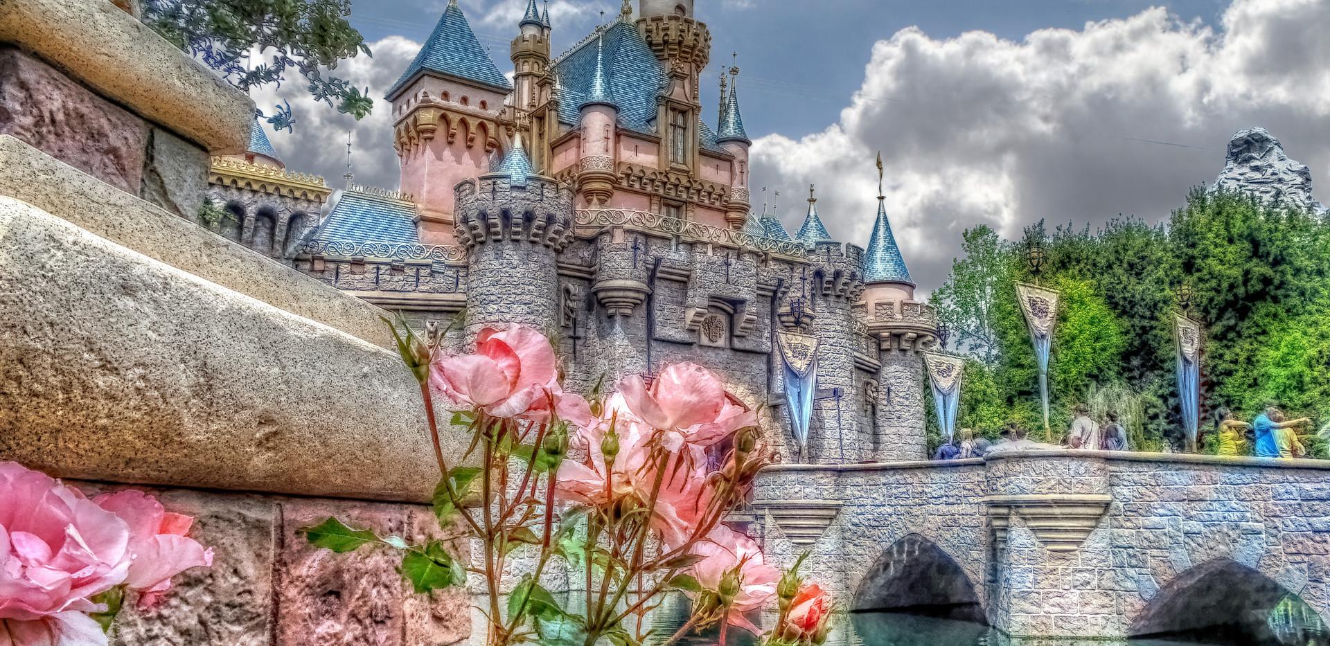 Sleeping Beauty Castle 05-01-09