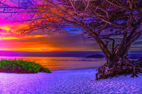 Sunset in Carmel 8