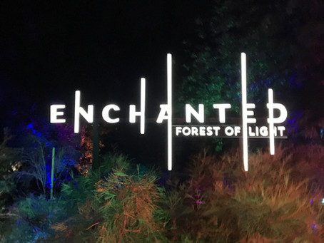 Night Out: Enchanted at Descanso Gardens