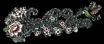 sophie-voon-10cm-clearcut.PNG
