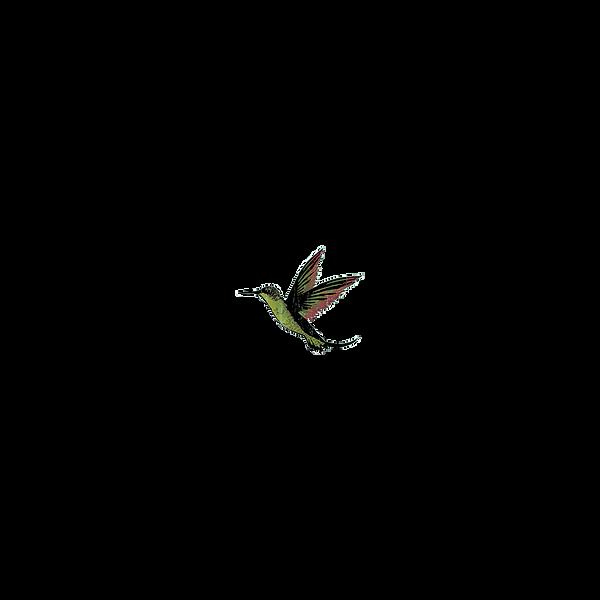 Clearcut SVB Bird.png