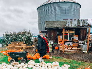 All the Leaves Around: Fall is Here! Yamhill County & Beyond - A List of Must Do's & Go's