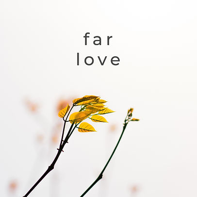 Far Love Album Art2.jpg