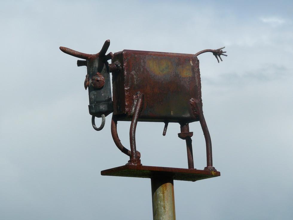 Cootcoorong Metal Bull