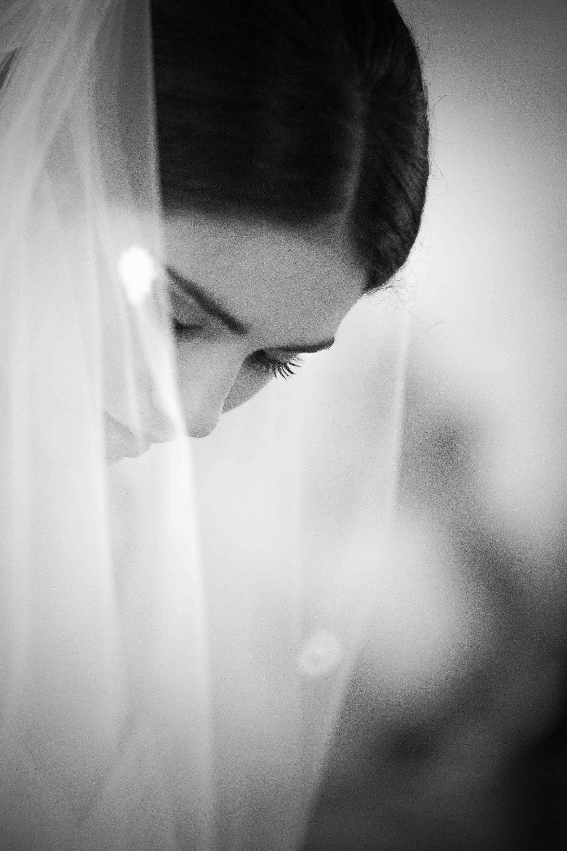 Fran Stivala photography