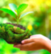 Eco-Friend.jpg
