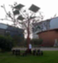 solartree.jpg