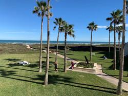 View & Lawn