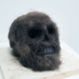 bigfoot skull.jpg