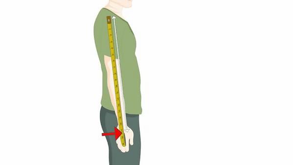 Замер длины рукава