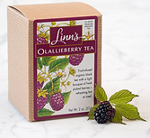 Brandt-Design-Studio-Packaging-Design-Linns-Olallieberry-Tea