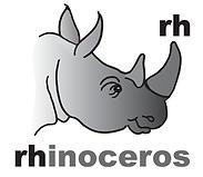 Brandt-Design-Studio-Identity-and-Illustration-rhino
