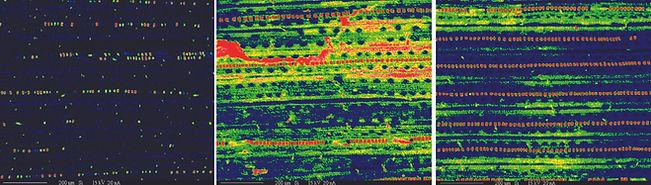 Macro-SI scans.jpg