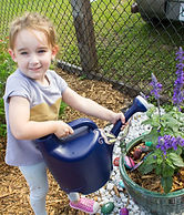 Watering plants in the butterfly garden.