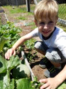 Boy in garden.jpg