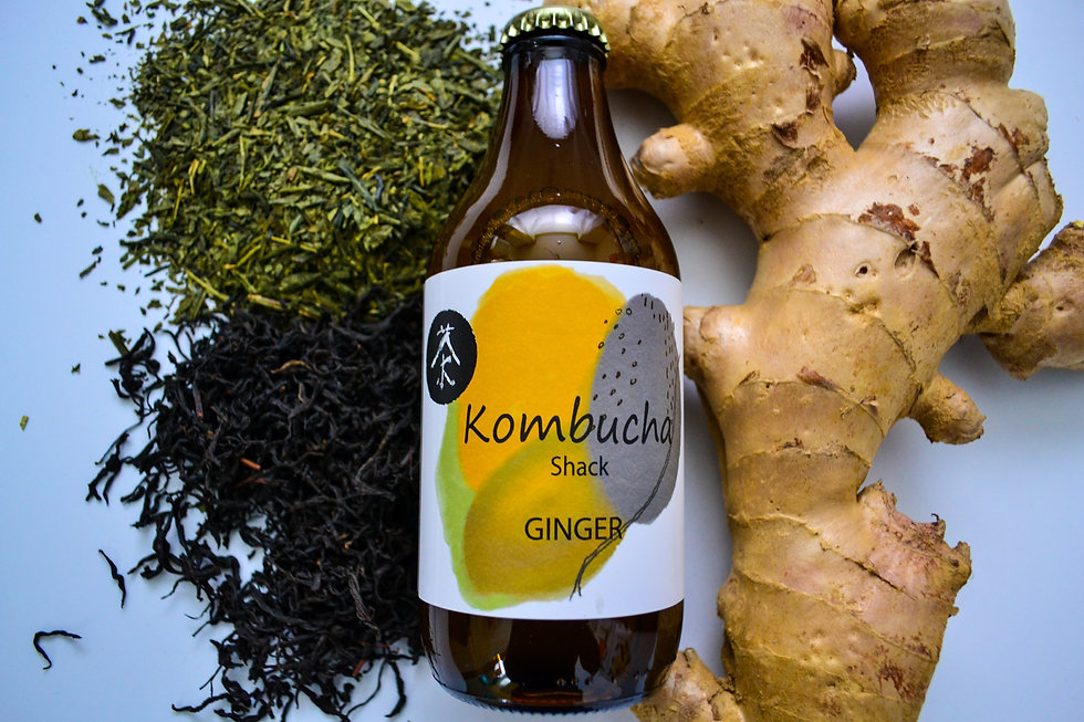 Ginger kombucha, green tea, fresh ginger