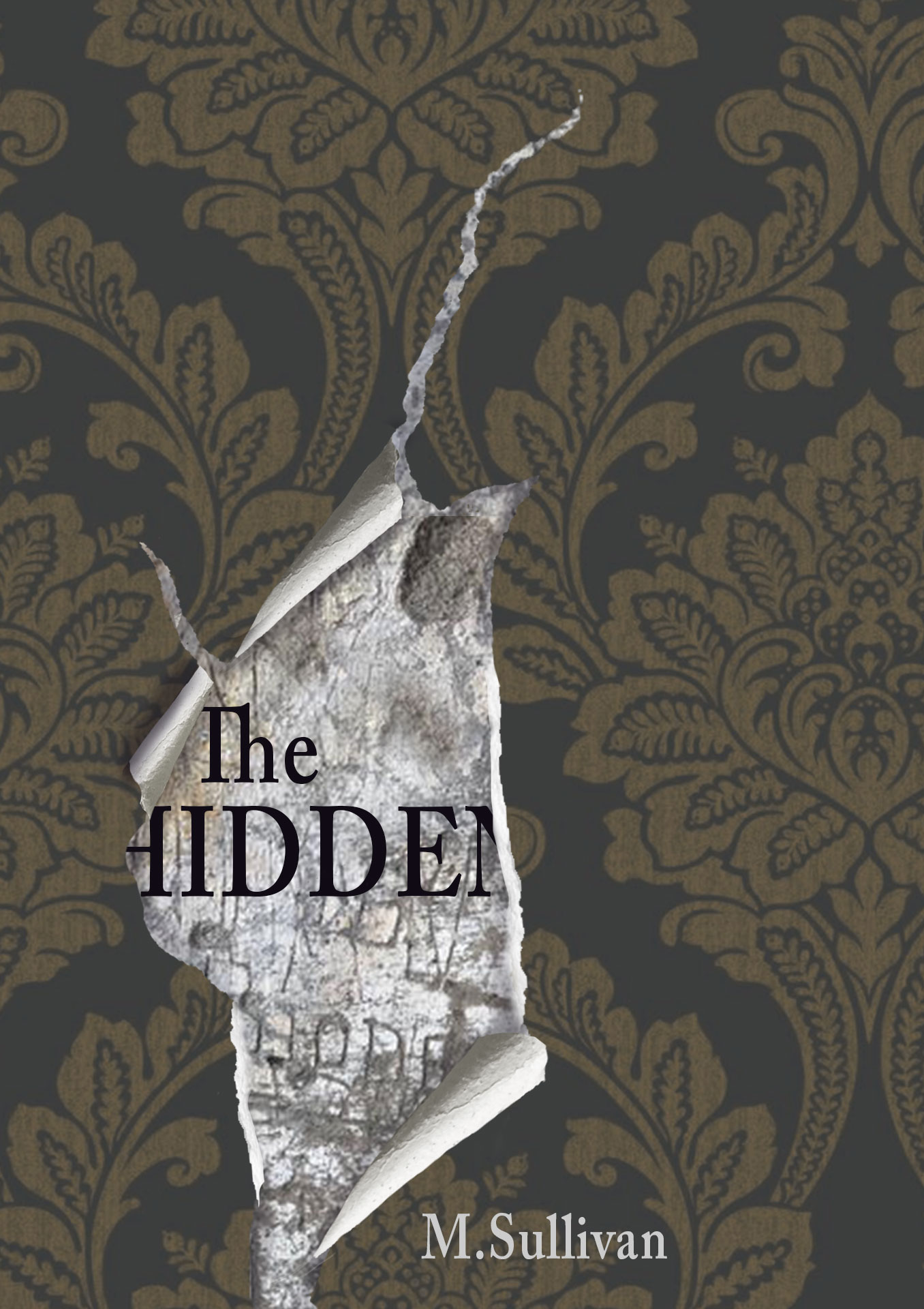 The-Hidden-bookcover-2