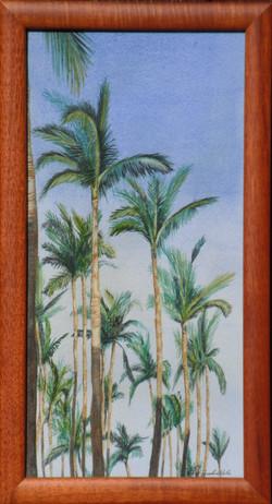 Trees of Puamana